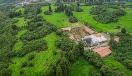 roof+farm-